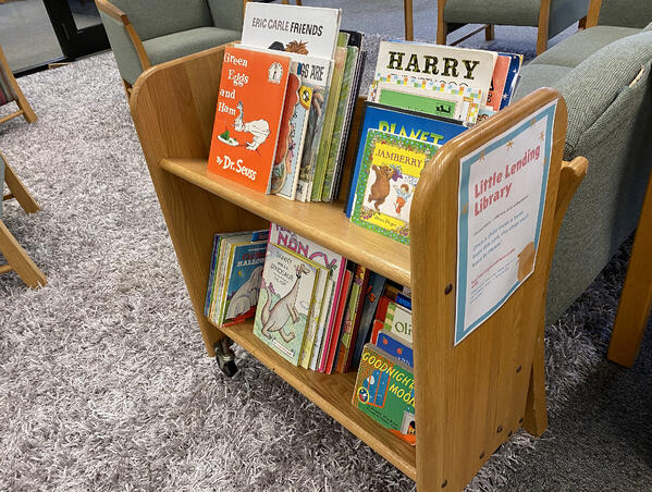 Little Library 01
