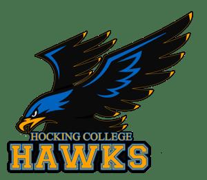 HawkLogo vector copy