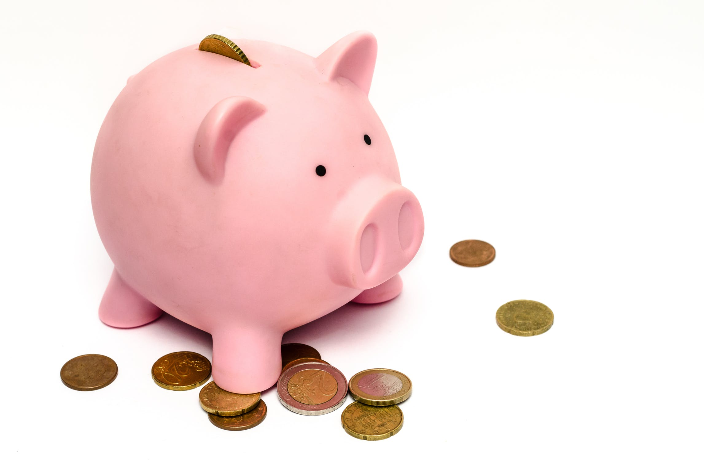 Establish What You Can Afford | Piggy Bank | 6 Steps to Help You Choose a College That is the Right Fit
