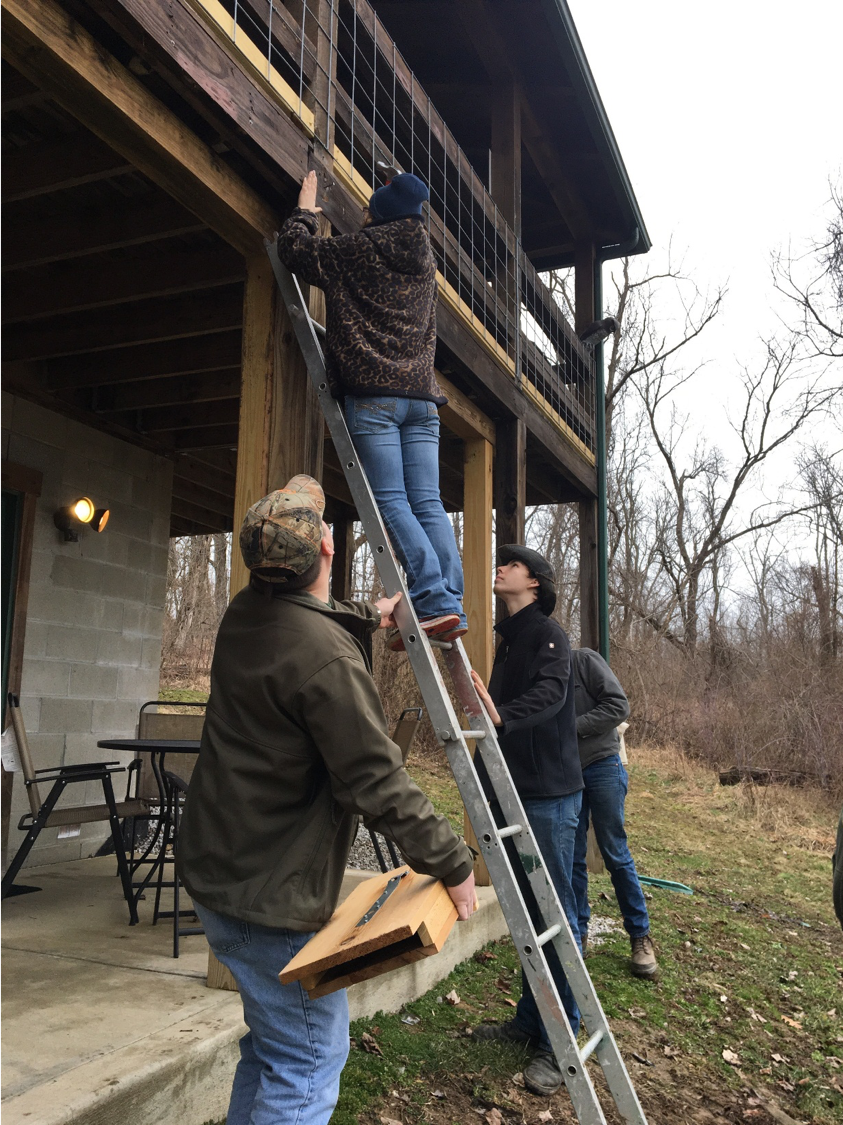 Hocking College Wildlife Club Students Craft and Hang Bat Boxes for Local Business