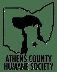 achs-logo-768x984-234x300