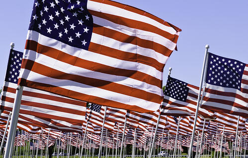 Many American flags flapping in the wind together on a national holiday-1