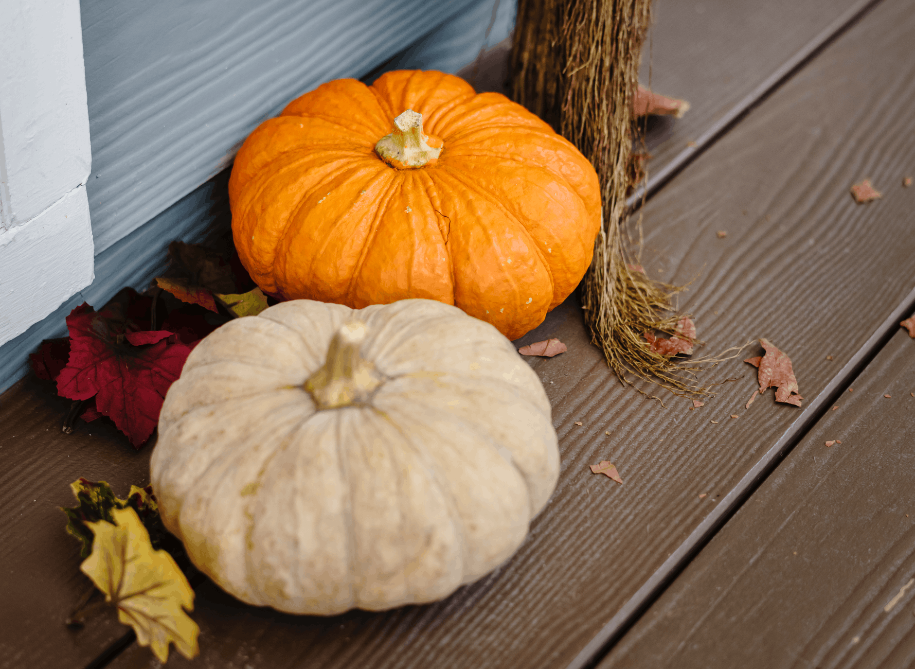 New Lexington Fall Festival | Things To Do Near Hocking College this September